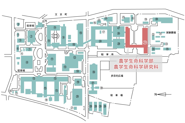農学生命科学部校舎 文京町地区キャンパスマップ