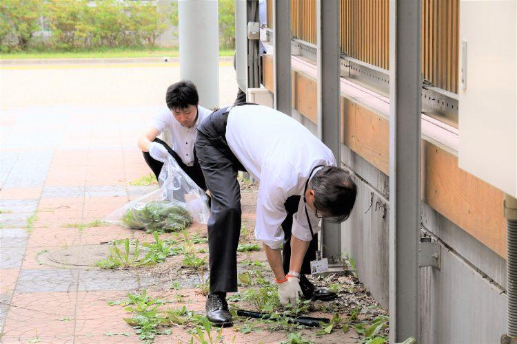 雑草を抜く学長