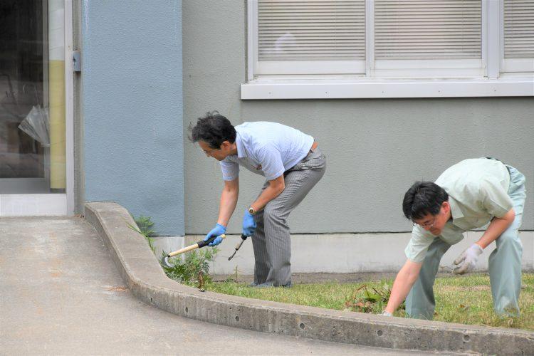 雑草を刈る渡辺理事